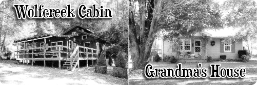vacation rental cabins